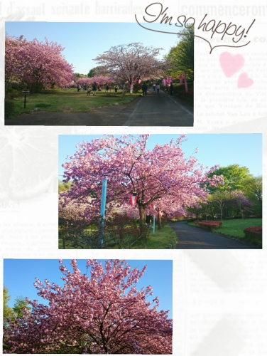 2017-05-17_14.49.57.jpg
