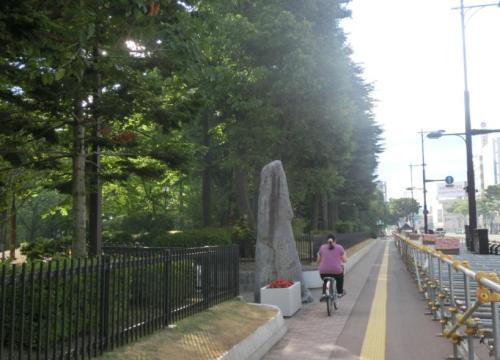 青い森公園.jpg