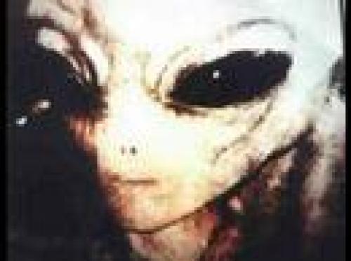 Alien 写真集