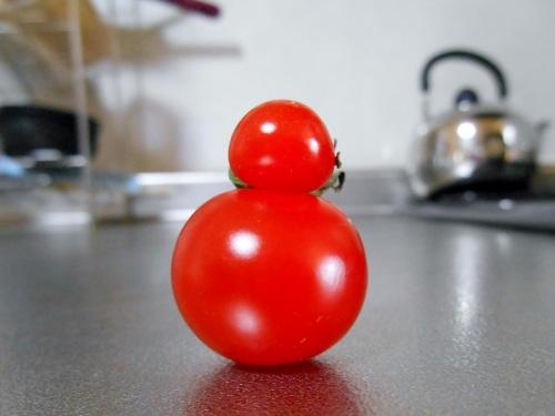 だるまトマト
