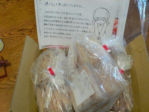 バラ子1.JPG