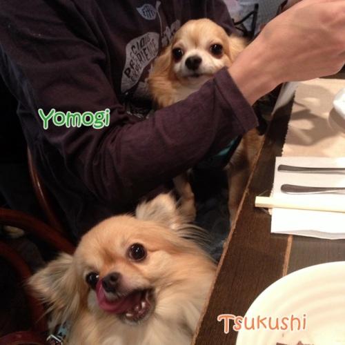 yomotsuku131005-13.jpg