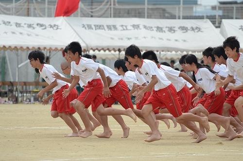 2013年京都高校体育祭 302.jpg