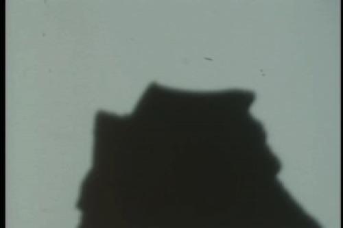 PDVD_020.jpg