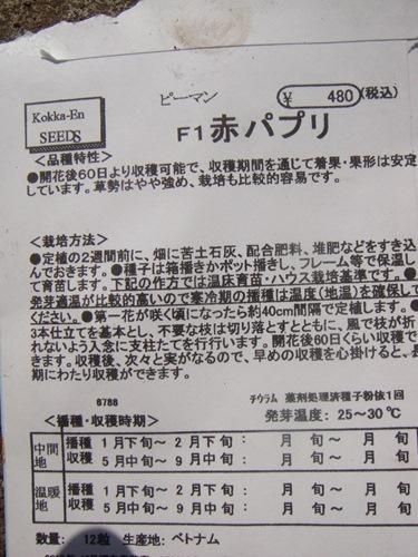 DSC04635_R.JPG