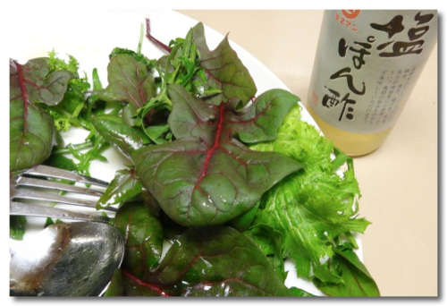 20111204sioponzuDrop(crop) -720.jpg