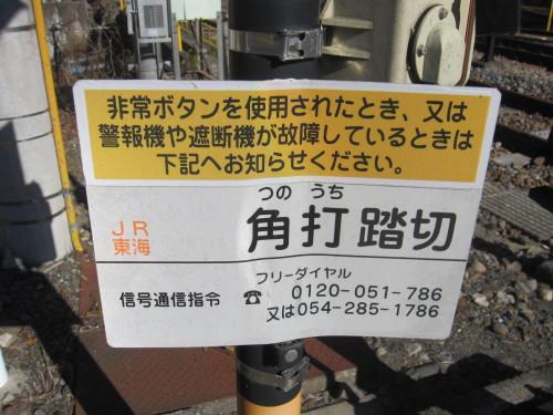 IMG_8132.JPG