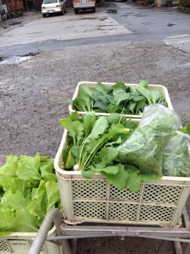 野菜の会.jpg