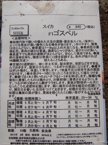 DSC04625_R.JPG