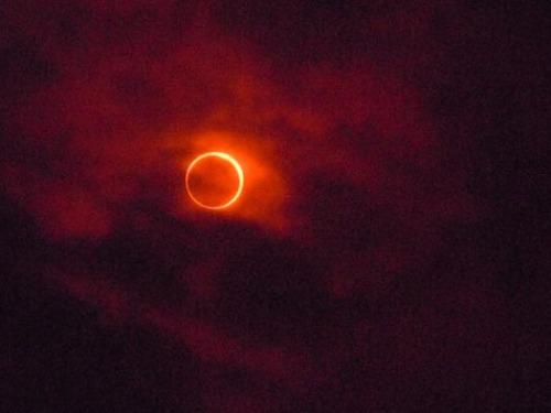 20120521金環日蝕1.jpg