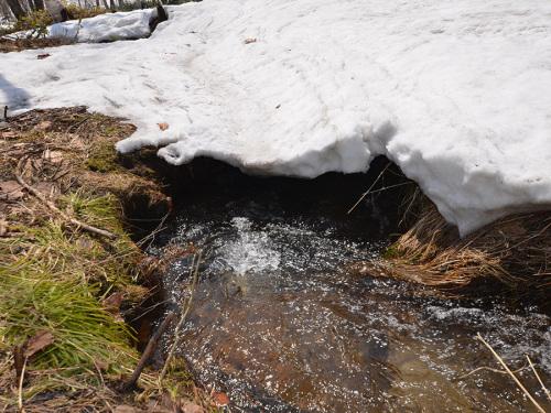 0416雪融け水.jpg