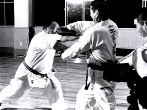 武道ドキュメント 拳豪の祭典.jpg