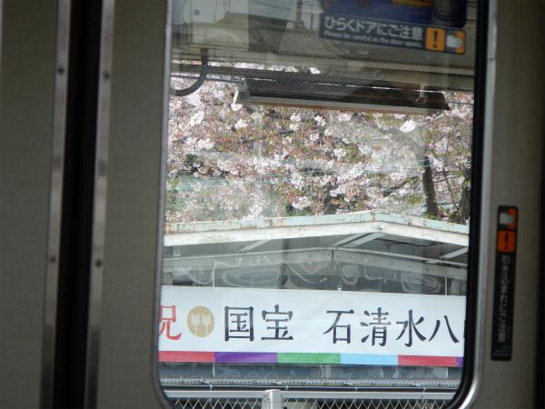 Z6-z_DSCN4688 (1).jpg