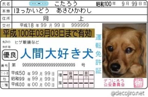 decojiro-20120824-140219.jpg-2.jpg