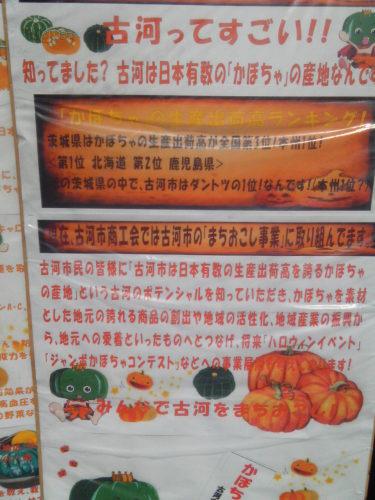 131012_09関東ドマンナカ祭り古河のかぼちゃ.JPG