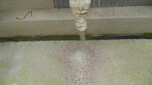 エアコン排水から犬走コンクリートを守る