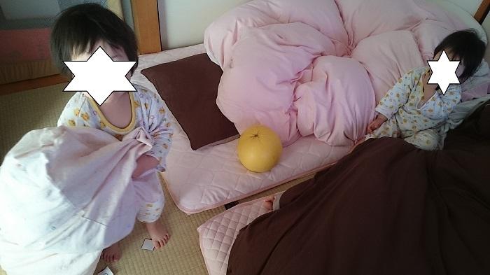 寝床に晩白柚持ち込み.JPG