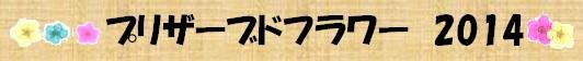 プリザーブド2014.jpg