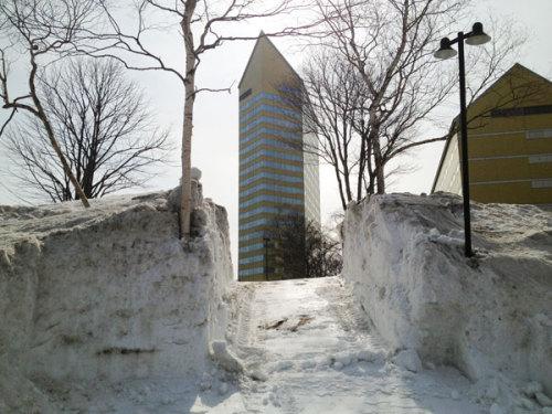 雪の回廊ミニ.jpg