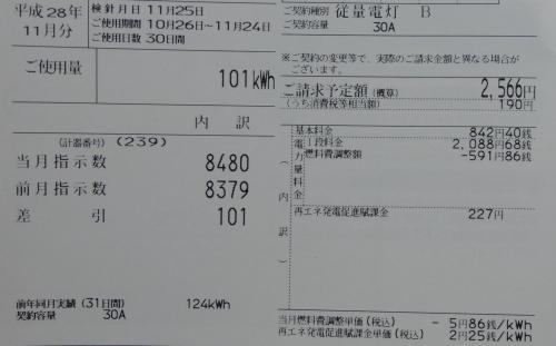 IMGP6458_1.jpg