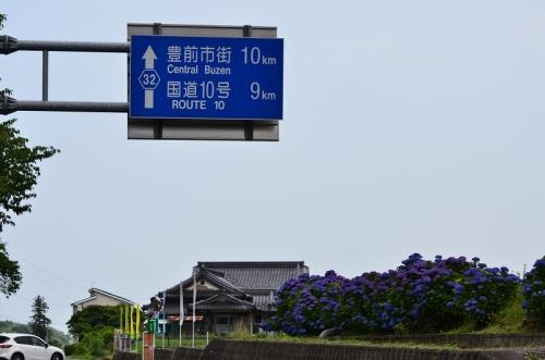 第6回枝川内あじさい祭りです! 120.jpg