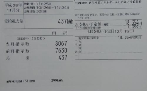 IMGP6457_1.jpg