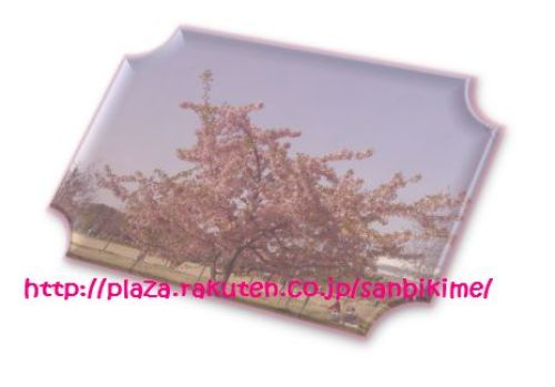 20120402_nagai_01.jpg