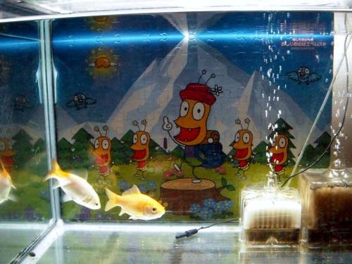 おしりかじり虫の水槽バックスクリーン