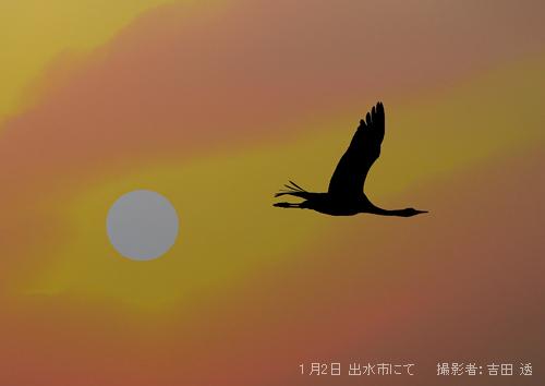 20130105-01_tsuru02.jpg
