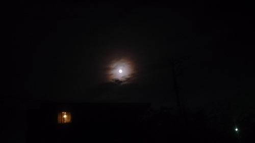 お月さん140909.jpg