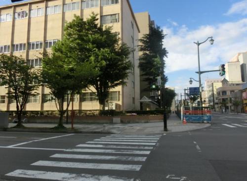 横断歩道6.jpg