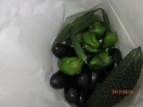 IMG_2957お土産野菜.jpg