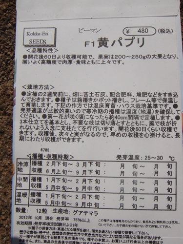 DSC04636_R.JPG