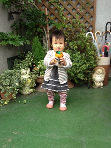 201310261813_7972_iphone.jpg