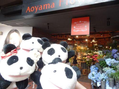 Aoyama Flower.jpg