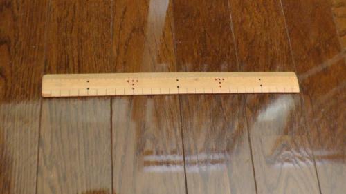 猫の体長を測る