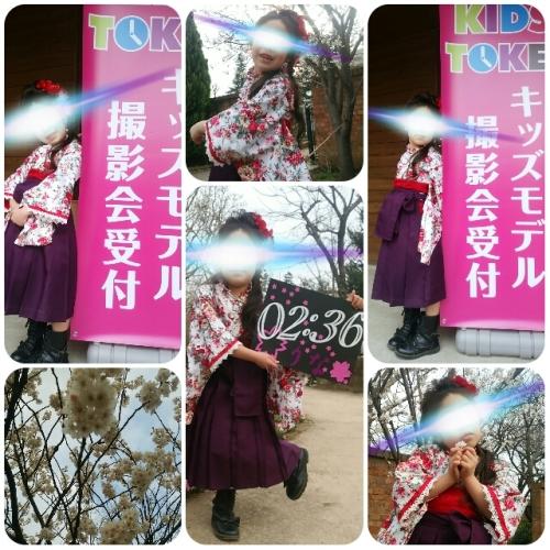 collage_20150318010320083.jpg