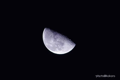 moon182.jpg
