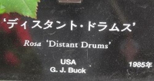ディスタント・ドラムス01.jpg