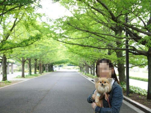 yomotsuku20140505-16.JPG