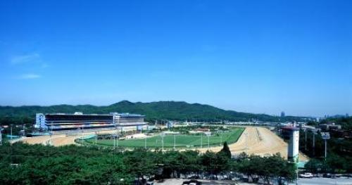 ソウル競馬場.jpg
