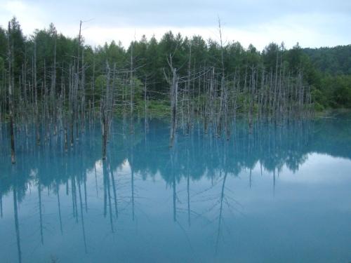 青の池.jpg