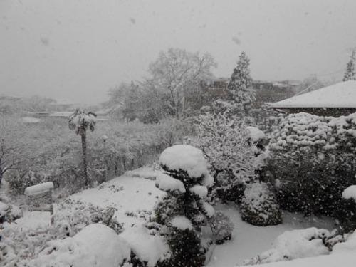 20130114部屋から見た景色.jpg
