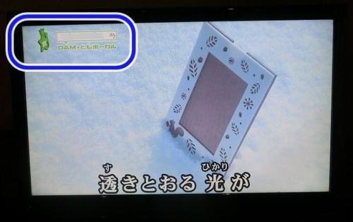 CIMG9510 p.jpg