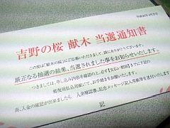 20140416吉野の桜.jpg