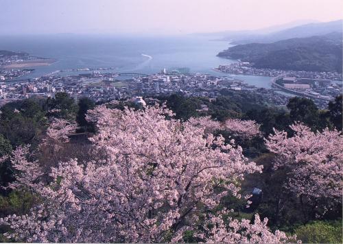 熊本市の桜の名所熊本県天草市の十万山展望台.jpg