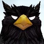 かか鴉(睨).jpg