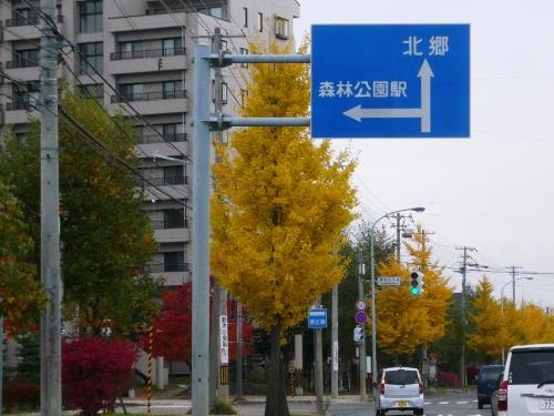 小江別紅葉.JPG