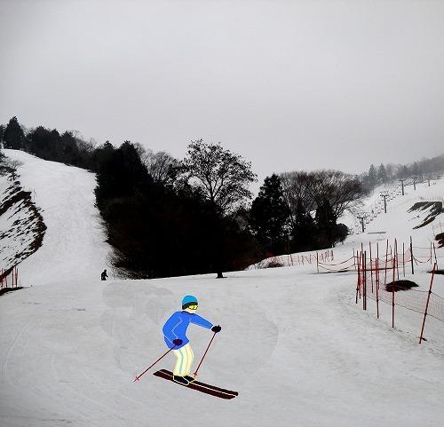 2015_2_23朽木スキー1.jpg