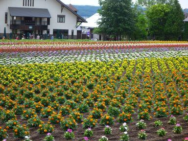 20150624-0629北海道旅行5泊6日63.jpg
